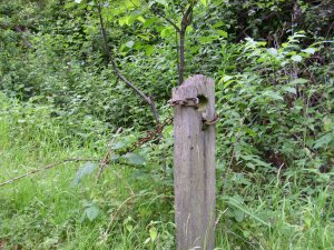 Great Staughton - old roadside post