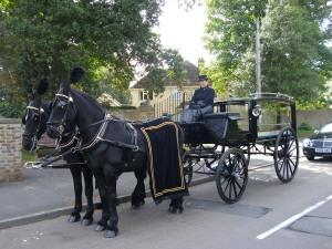 horses outside church