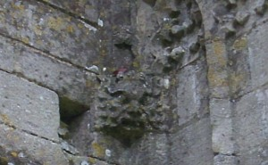 very close up of green man