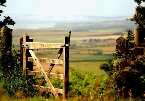 gate images the - photo #27
